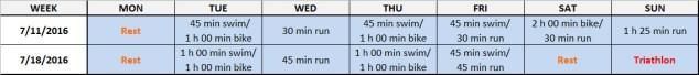 First and last week of the Endurance Works Half Ironman training plan