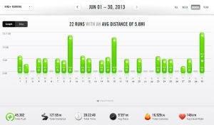 June 2013 – Nike+ Summary