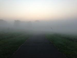Scenes from my morning run