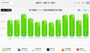2013 Summary - Nike+