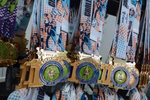 Goofy Challenge 10th Anniversary Medal