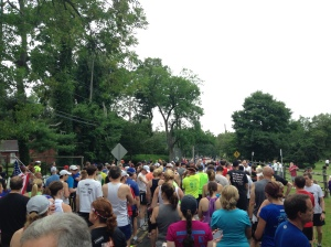 The 5K crowd was lined up just ahead of us.
