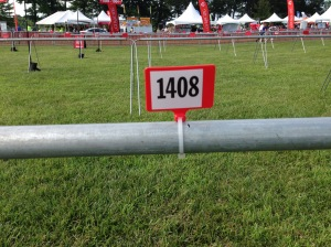 My designated spot for the race